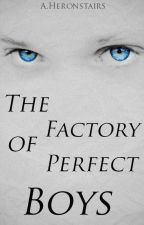 The Factory of Perfect Boys by OurLitttleInfinity