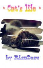 • Cat's life • by RisaDesu