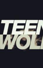 Teen Wolf Preferences by BADickau