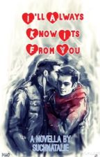 I'll Always Know It's From You (A Sterek Novella) by suchnatalie