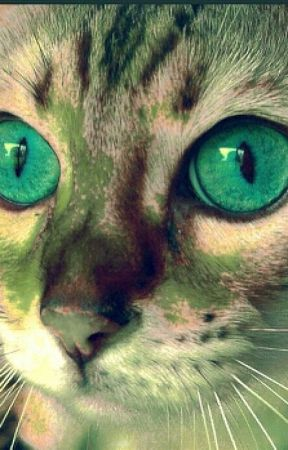 Warrior cat name generator - Clan/Country - Wattpad
