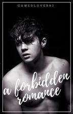 A Forbidden Romance (In Progress) by CameoLover93