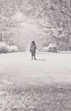 The Hero Chronicles: Snowfall by Goome126