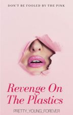 Revenge On The Plastics--Heavy Editing by pretty_young_forever