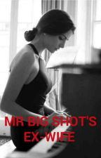 Mr Big Shot's Ex-Wife by kaseymiller2