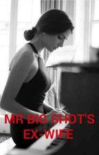 Mr Big Shot's Ex-Wife by kaseymiller2