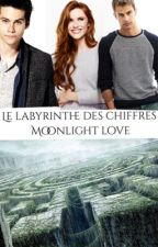 Le labyrinthe des chiffres by zoe141D