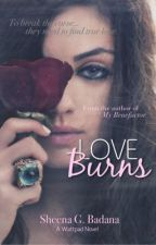 Love Burns (On Hold) by crimsonnebula