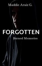 Burned Memories  by maddieg14