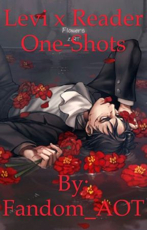 Levi x Reader One-Shots - Taller Than You {Levi x Short