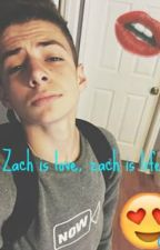 zach is love, zach is life (dirty fanfic) by WilksOverDose