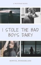 I Stole the Bad Boy's Diary by Bowtie_Wonderland