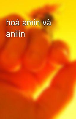 hoá amin và anilin