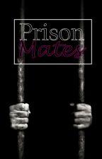 Prison Mates by Natchie9