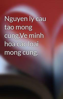 Nguyen ly cau tao mong cung.Ve minh hoa cac loai mong cung.