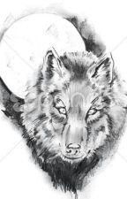 O Lobo Branco by jefersonvieira5458