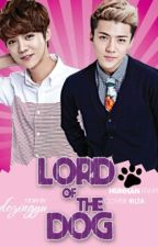Lord Of The Dog || HunHan by dozingyu