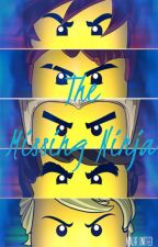 The Missing Ninja {Completed} by LizzGarmadon233255