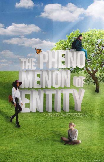 The Phenomenon of Entity