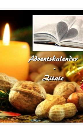 Adventskalender - Zitate by vessi99