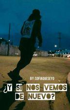 ¿Y Si Nos Vemos De Nuevo? (Skrillex & tu) by SofiaQueSeYo