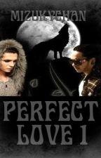 Perfect Love 1 by MizukyTWC
