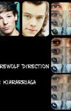 Werewolf Direction by kiararriaga
