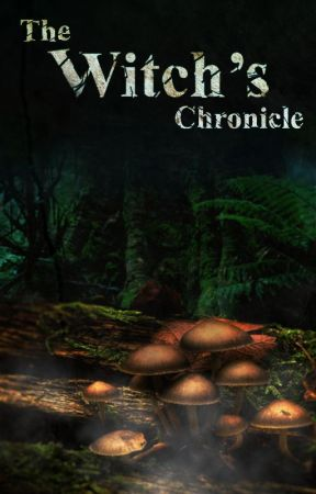 The Witch's Chronicle by Feathery