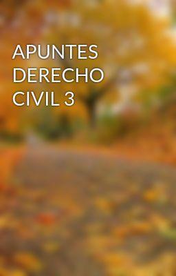 APUNTES DERECHO CIVIL 3