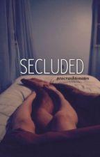 Secluded (Ashton Irwin) by Procrashtonates