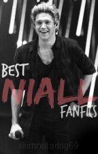 Best Niall FanFics by 93niallslays