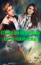 El Chico Que Se Escabulle En Mi Habitación [Justin Bieber] by PaolaNickyMoon1