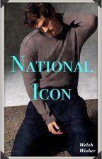 National Icon BoyxBoy by MissRena14