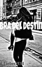 """Obra del destinó."" |#2da Temporada (EPUA)| by Ani_Bieber2014"