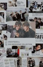 EXO BS COLLECTION [EXO OTP] by onychophagy