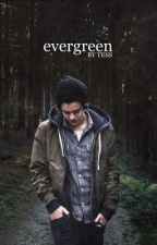 Evergreen [h.s] (Türkçe) by thebestisgreen