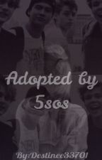 Adopted by 5sos by destinee6033