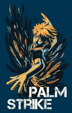 Palm Strike (Haikyuu! Fanfic) by LectorDominion