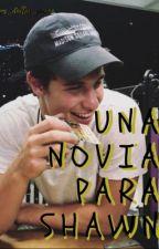 Una novia para Shawn (Shawn Mendes y tu) by agus_dallas_payne