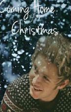 Coming Home For Christmas [niall horan au]|#Fanficfriday#holiday by WinnieBirdy_17