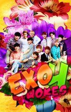 EXO Jokes Part 4 (New Laughs) by Kpop_ExoShinee