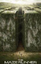 Maze Runner - A Rebelião by darkshowrd