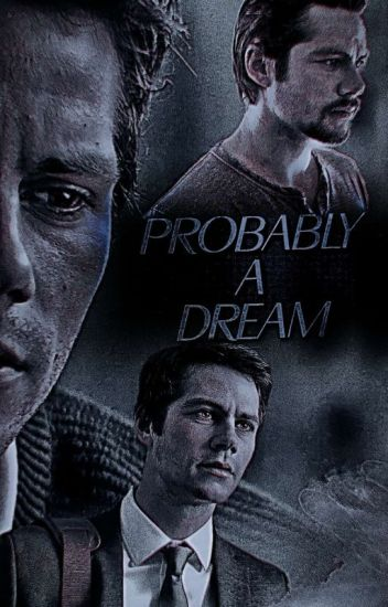 Probably A Dream | FRENCH STEREK (BxB)