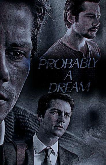Probably A Dream | STEREK (BxB)