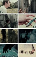 The Maze Runner by dislated