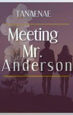 Meeting Mr. Anderson (bwwm) (Interracial) Complete by tanaenae