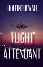 Flight Attendant by HoleInTheWall