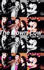 The Down Low [EDITING] by twerkchel