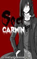 Sed carmin by fortalezaunicornio24