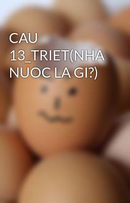 CAU 13_TRIET(NHA NUOC LA GI?)